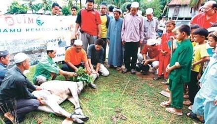 Sumbang 22 ekor lembu korban