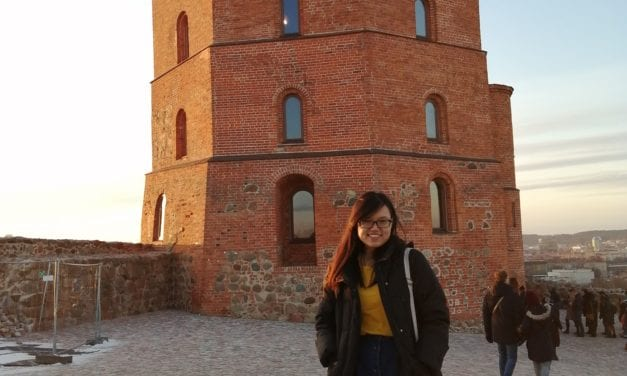 Tong Xin Jo's Internship Experience at Vilnius Gediminas Technical University (VGTU) Creativity and Innovation Centre